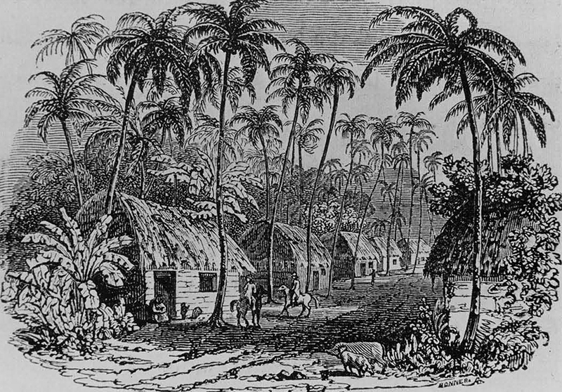 """Image of Caribbean village from """"A Voyage to the Islands..."""""""