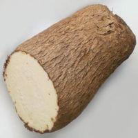 Jamaican white yam