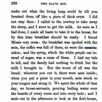 """The Slave Son"" Excerpt"